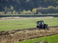 idei-de-afaceri-in-agricultura